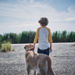 """""""In The Tall Grass (En la hierba alta)""""; el pulso y atmósfera de Natali hacen atractiva otra adaptación de King de la mano de Netflix"""